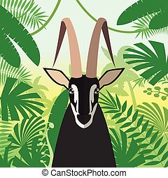 Black Buck on the Jungle Background