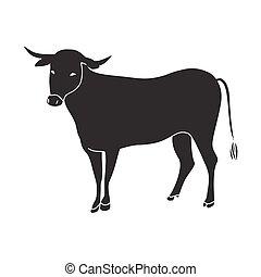 black bull vector illustration