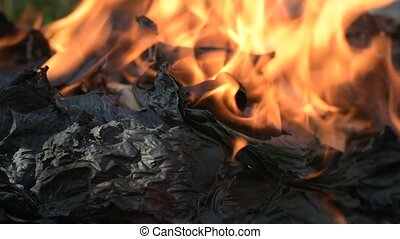 Black burnt paper in the fire. Burning book on the ground.