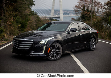 Black business class sedan parking on the road