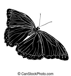 Black butterfly silhouette on white background.