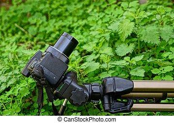black camera on a tripod in green grass