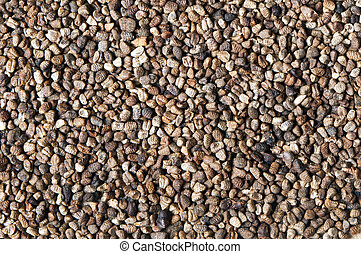 Black cardamom (or cardamon) seeds (the background)