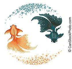 black carp goldfish
