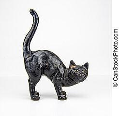 Black Cat Against White