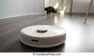 Black cat chasing smart robot vacuum cleaner with interest....