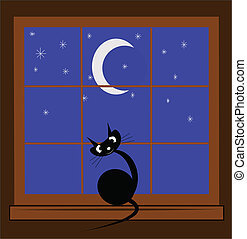 cat in window - black cat in window looking out into night...