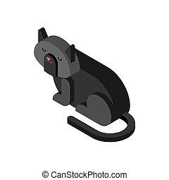 Black cat Isometrics. Home pet 3d. Vector illustration