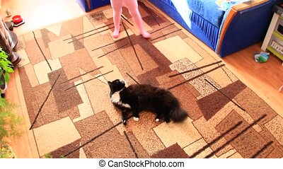 Black cat lolling about on carpet. Lazy pet laying on floor...