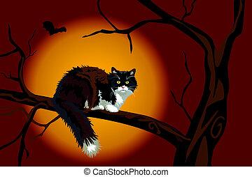 Black cat on dead branch on Halloween night - Halloween...