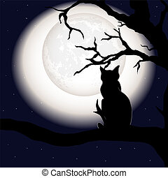 Black cat on dead branch on Halloween night