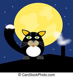 Black cat on roof