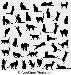 Black Cat Set Isolated Transparent Background