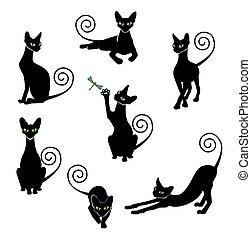black cat silhouette set