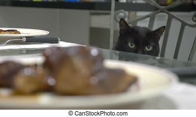 black cat watching a piece of meat on the kitchen table.