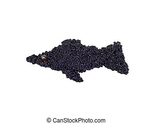 Black caviar is laid out in view of the fish