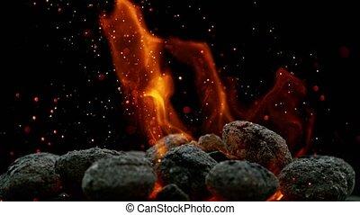 Black Charcoal in Bonfire, Super Slow Motion