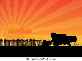 Black combine - Black silhouette of combine under the sunset...