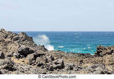 Black Coral Stone on Coast of Aruba
