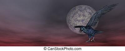 Black crow by night - 3D render