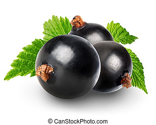 Black currant isolated on a white background