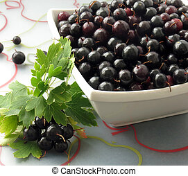 Black Currants - Freshly picked black currants in a small...