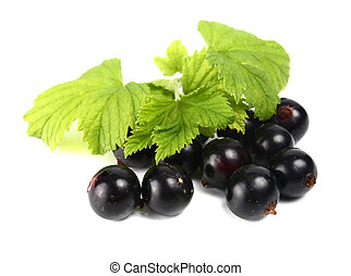 currants - black currants isolated on white background