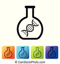 Black DNA research, search icon isolated on white background. Genetic engineering, genetics testing, cloning, paternity testing. Set icon in color square buttons. Vector Illustration