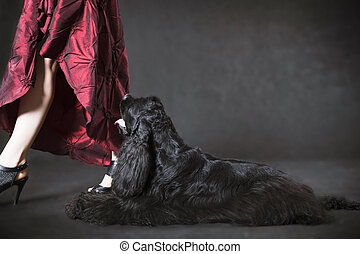 Black dog american cocker spaniel and lady in red