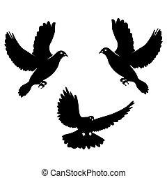 Black dove. Icon isolated on white