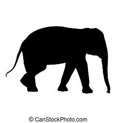 Black elephant silhouette Asia walking, graphics disign...
