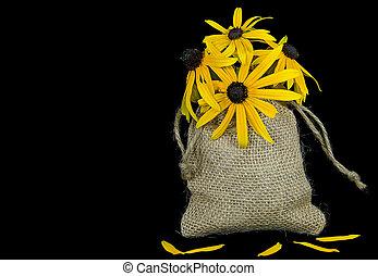black-eyed susan bouquet - Black-eyed susan bouquet in...