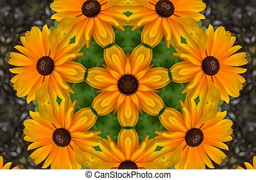 Black eyed Susans design