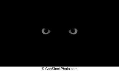 black eyes blink