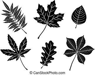 Black fall leaves silhouettes