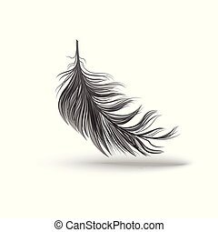 Black falling fluffy feather vector illustration isolated on white background.