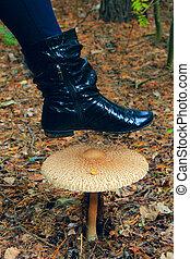 feminine boot under the big inedible mushroom of toadstool