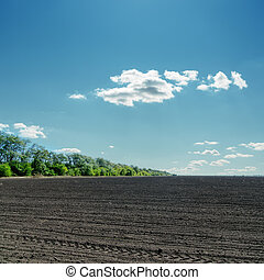 black field under cloudy blue sky