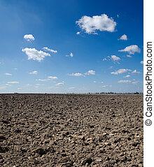 black field under deep blue sky