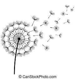 Beautiful white background with stylized black dandelion blowing. Floral stylish trendy wallpaper with summer or spring flowers and flying fluff. Modern backdrop. Vector illustration