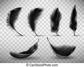 Black fluffy feather with shadow vector realistic