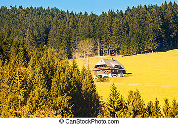 Black Forest Landscape - Farmland, historic farmhouse and...