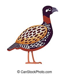 Black francolin or Black Partridge is a gamebird in the pheasant family Phasianidae of the order Galliformes, gallinaceous birds. Cartoon, flat character of ornithology, vector illustration isolated.