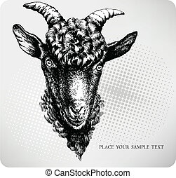 Black goat hand drawn. Vector illus