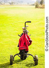 Black golf bag over green