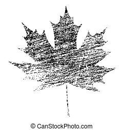 Black Grunge Maple Leaf