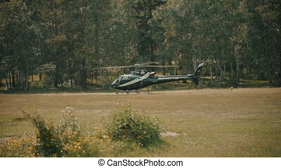 Black helicopter landing on ground backgrond of green forest on summer day. Chopper sitting on grass while traveling in natural surroundings with forest on sunny weather. There is aviation vehicle is in outdoors in ecological park without anyone. Concept: transport, outside, environment.