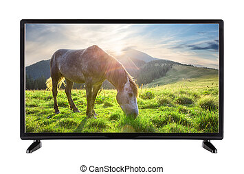 Black High Definition TV with picture of horse