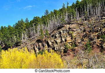 Black hills and sky background