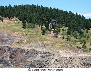 Black Hills hillside